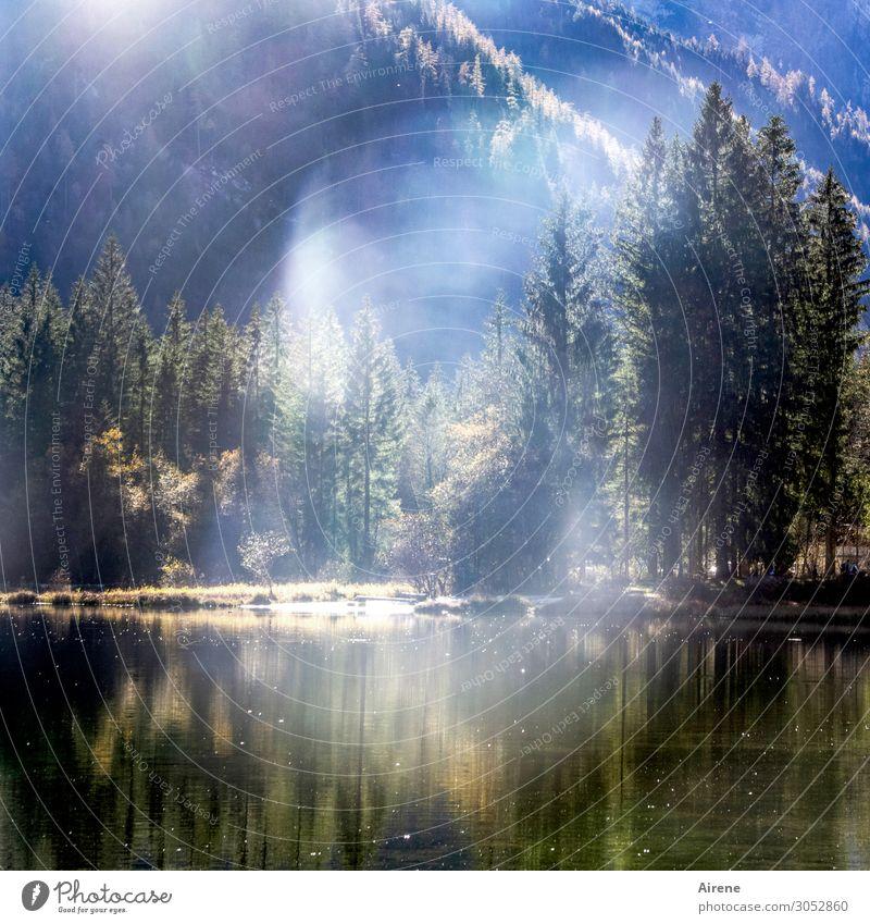 nebulös   Erscheinung am Bergsee Natur blau grün weiß Landschaft Erholung Einsamkeit ruhig Wald Herbst See Zufriedenheit wandern leuchten träumen Nebel