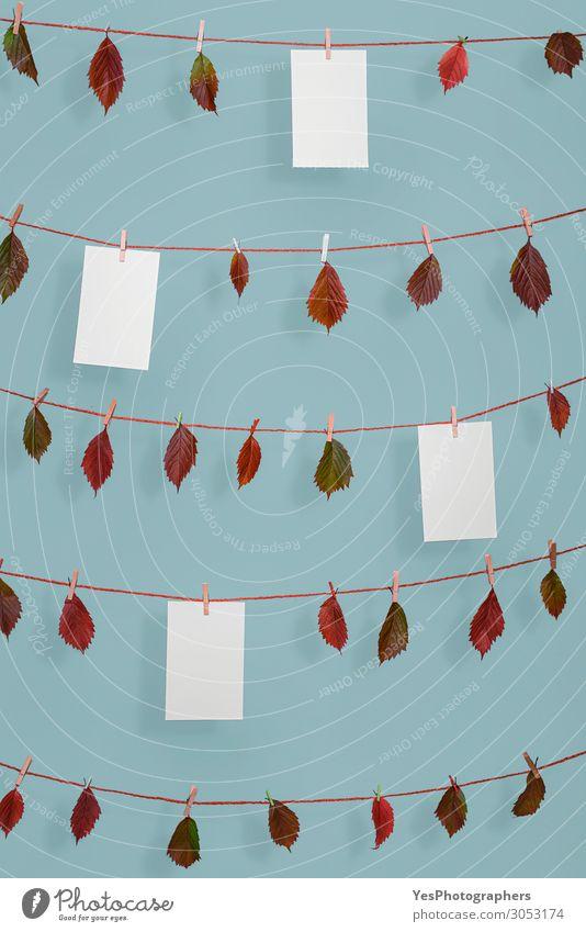 Herbstblätter und leere Papierblätter auf Schnur Seil Natur Pflanze Blatt Ornament retro rot Ordnung November Oktober Hintergrund blanko blaue Wand Wäscheleine