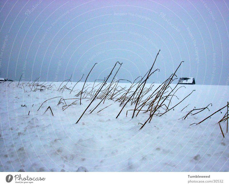 Schnee Verweh..... Himmel Winter Haus kalt Schnee Sandverwehung