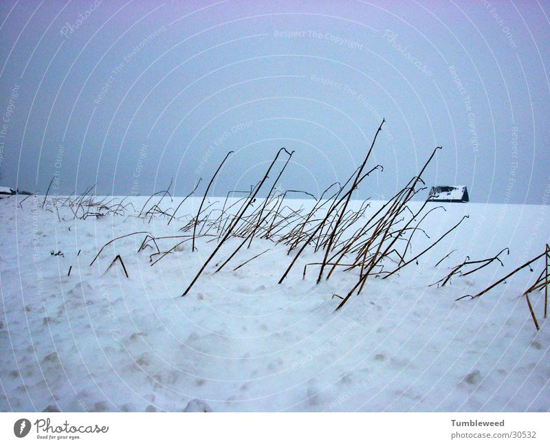 Schnee Verweh..... Winter Sandverwehung kalt Haus Himmel