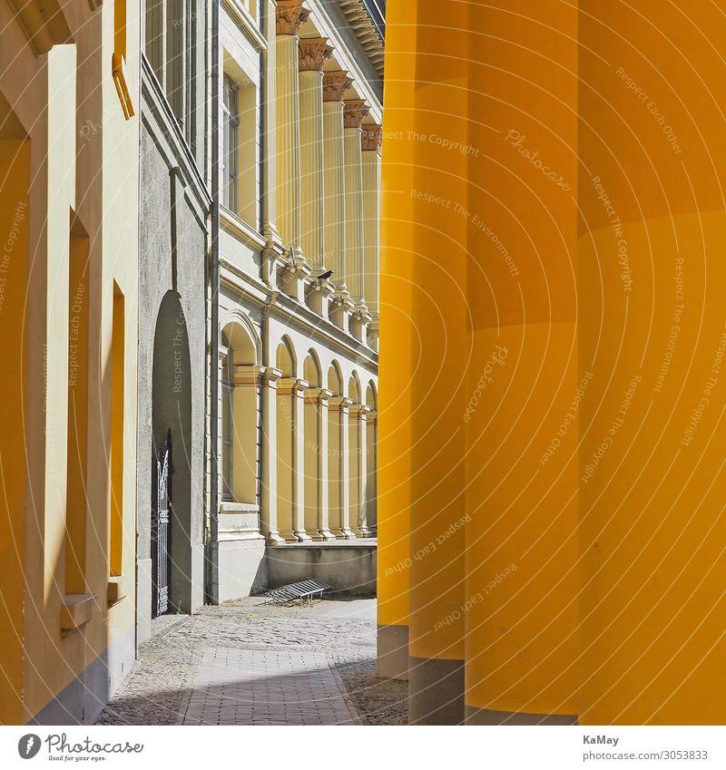 Zoologisches Instituts der Universität Rostock Studium Deutschland Europa Stadt Altstadt Menschenleer Bauwerk Gebäude Architektur Fassade Sehenswürdigkeit alt