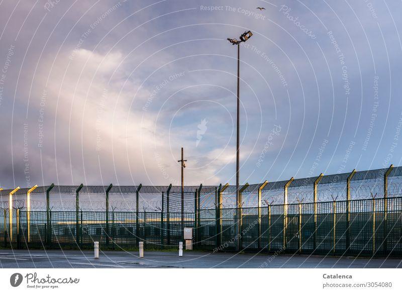 Eine menschenleere, gut bewachte Grenzanlage. Eine Möwe fliegt am wolkenbedektem Himmel über sie hinweg Zaun Grenze Flutlichter Maschendraht Wolken