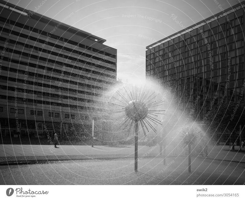 Pusteblümchen Wasser Wassertropfen Wolkenloser Himmel Schönes Wetter Dresden Deutschland Hauptstadt Prager Strasse Stadtzentrum Fußgängerzone bevölkert Haus