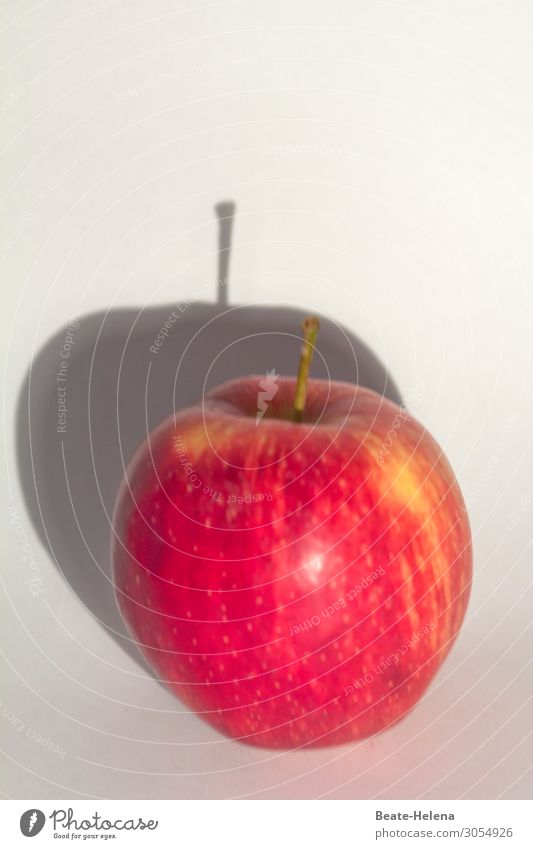 Sonne lässt den Apfel wachsen Lebensmittel Frucht Ernährung Bioprodukte Vegetarische Ernährung Landwirtschaft Forstwirtschaft Natur Schatten Schattenseite