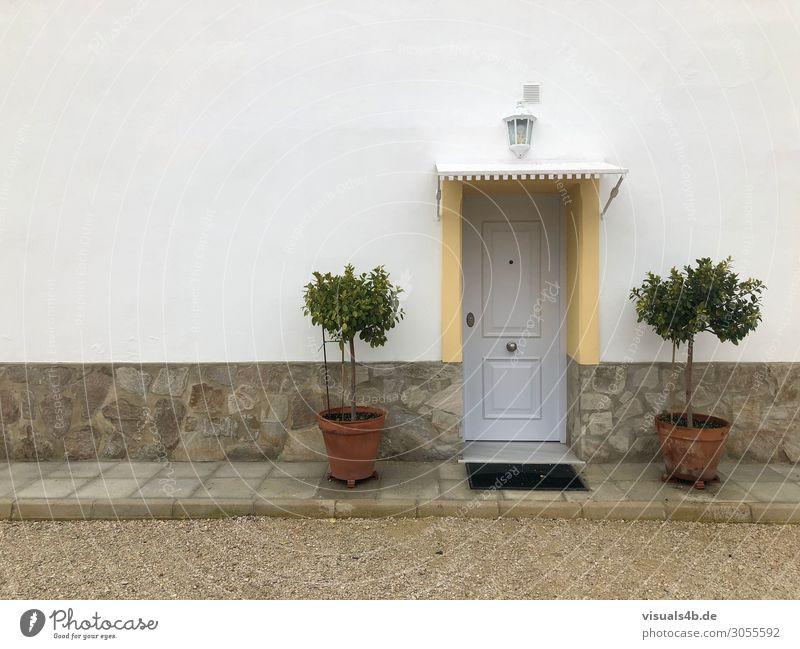 Home Sweet Home Lifestyle Ferien & Urlaub & Reisen Tourismus Sommerurlaub Wohnung Haus Eingangstür Pflanze Baum Grünpflanze Topfpflanze Blumentopf Orangenbaum