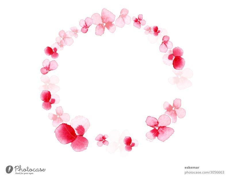 Kirschblüten, Aquarell auf Papier Gemälde Wasserfarbe Kranz Natur Pflanze Frühling Baum Blume Blüte Blühend ästhetisch Duft schön rund rosa weiß