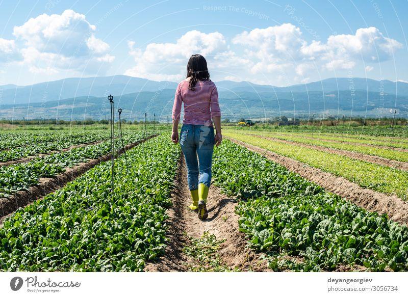 Frau mit grünen Stiefeln, die auf dem Spinatfeld spazieren geht. Gemüse Vegetarische Ernährung Diät Garten Erwachsene Umwelt Pflanze Blatt Wachstum frisch