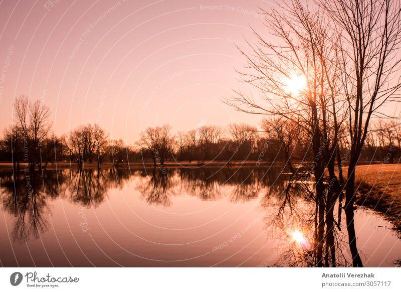 rosa Sonnenaufgangslandschaft am See schön Sommer Spiegel Natur Landschaft Himmel Wolken Nebel Baum Gras Wiese Wald Hügel Fluss hell gelb rot Farbe ruhig