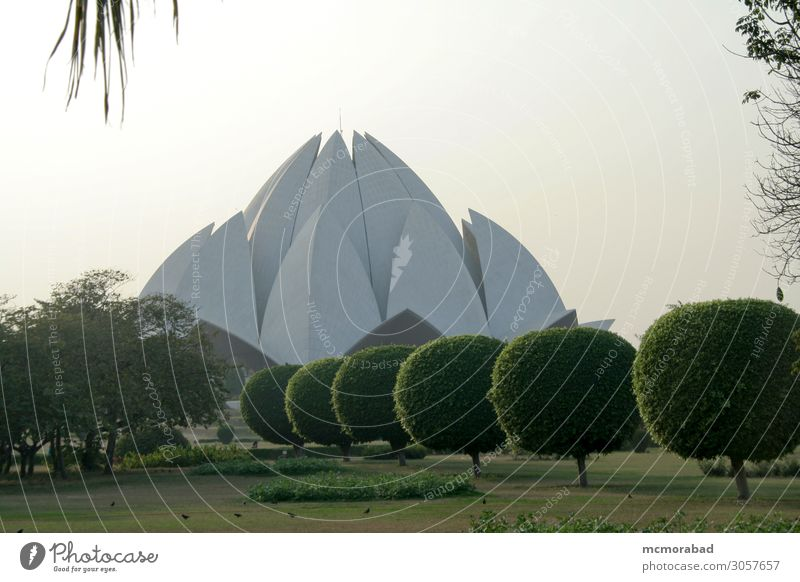 Lotus-Tempel durch den Garten schön ruhig ästhetisch grau grün Gelassenheit Lotustempel Bahai Tempel Gottesdienst Hingabe Gebetshalle friedlich Windstille