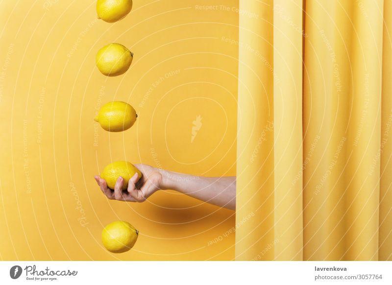 Frauenhand hält eine Zitrone. Finger Diät Vitamin C Stoff Vorhang Konzepte & Themen Levitation Gardine Zitrusfrüchte Frucht Sommer frisch Lebensmittel