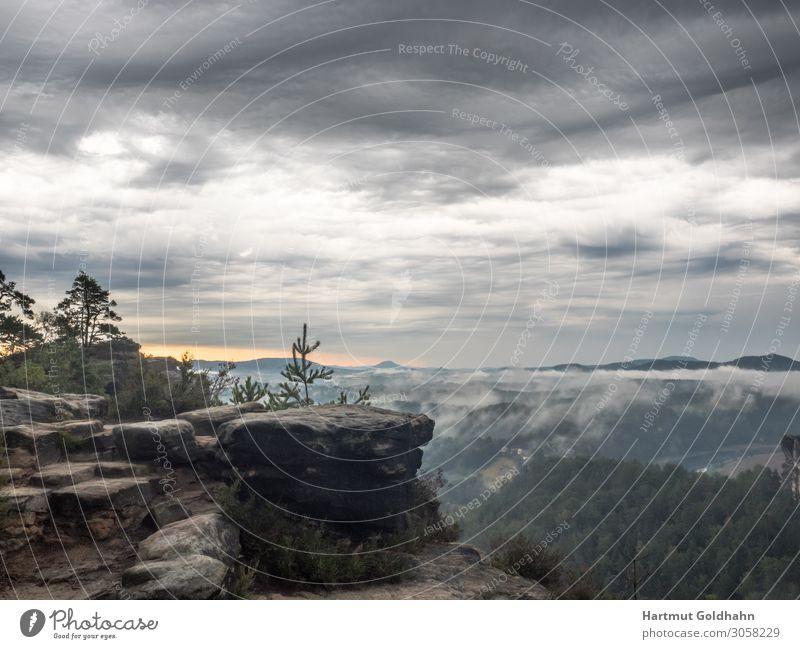 Kurz vor dem Sonnenaufgang in der Sächsischen Schweiz. Ferien & Urlaub & Reisen Tourismus Berge u. Gebirge wandern Natur Nebel Wald Felsen Sehenswürdigkeit