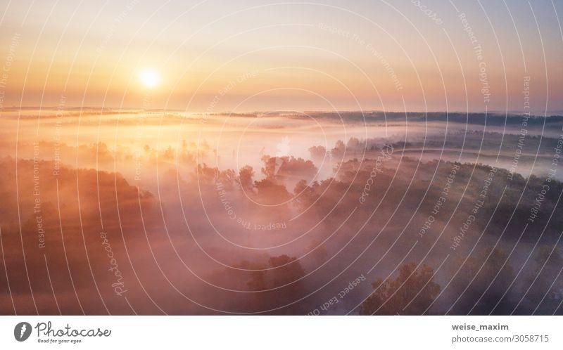 Sommer Natur Landschaft Luftpanorama. Nebliger Morgen ruhig Ferien & Urlaub & Reisen Tourismus Ausflug Abenteuer Ferne Freiheit Sommerurlaub Umwelt Wasser