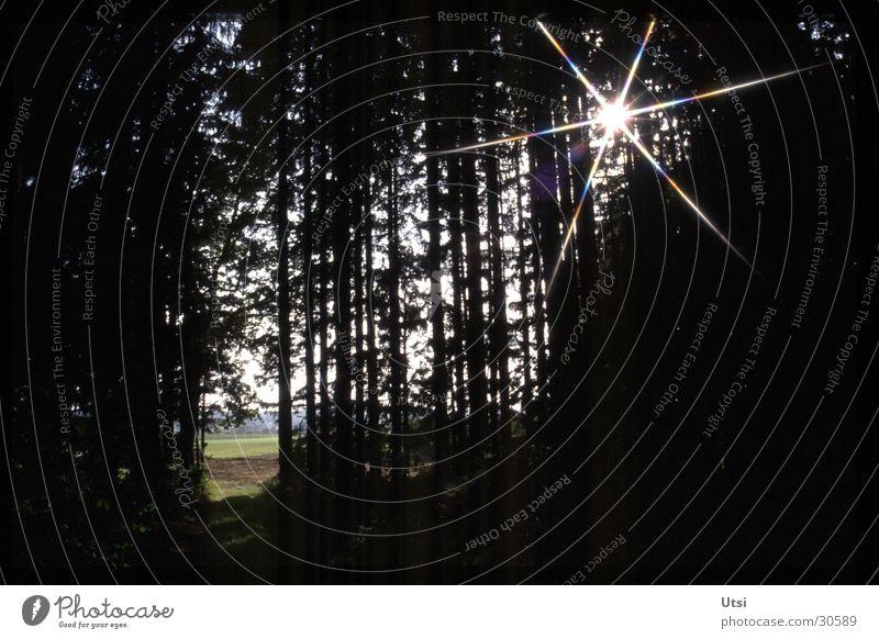 Lichtblicke Sonne Wald Berge u. Gebirge Bayern