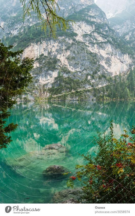 Pragser Wildsee / Lago di Braies Umwelt Natur Landschaft Baum Wasser Himmel Wolken Nebel Alpen Berge u. Gebirge Südtirol See wandern Ferien & Urlaub & Reisen
