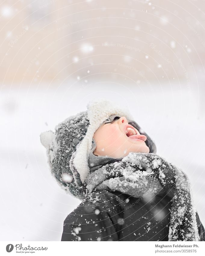 Schneesnack Kind Junge Mund 1 Mensch 3-8 Jahre Kindheit Winter Schneefall kalt niedlich grau weiß Wahrheit authentisch Neugier Fernweh Hemmungslosigkeit