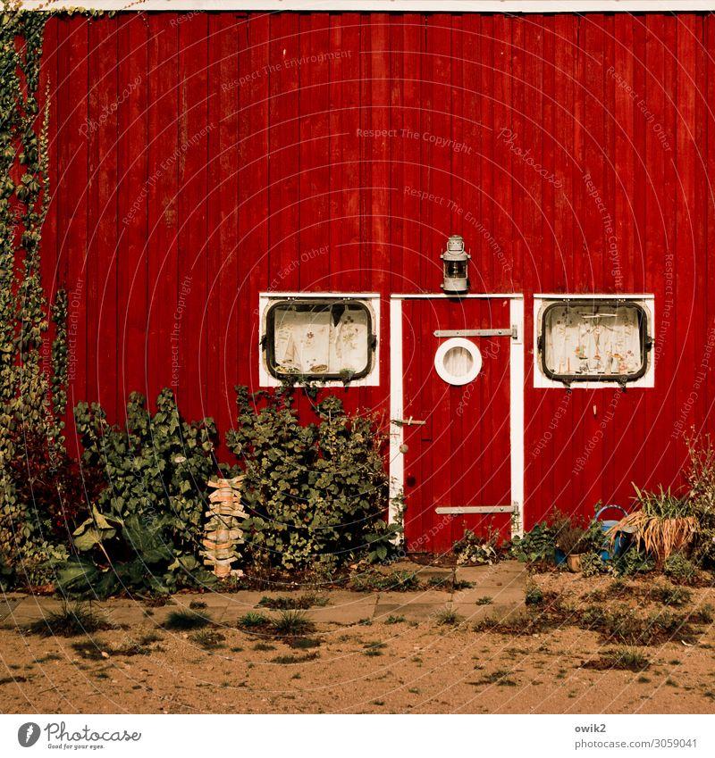 Home Sweet Home Erde Sand Sträucher Hütte Gebäude Mauer Wand Fassade Fenster Tür Holz alt maritim rot Idylle leuchtende Farben Farbfoto Außenaufnahme