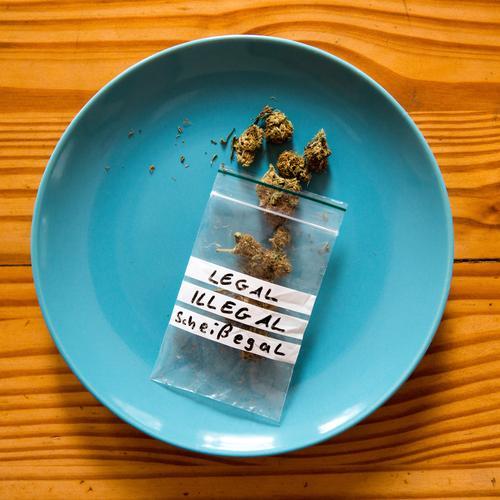 Cannabis beschäftigt ... Teller Lifestyle Alternativmedizin Rauschmittel Erholung Hanf Plastiktüte Schriftzeichen gebrauchen genießen ästhetisch authentisch