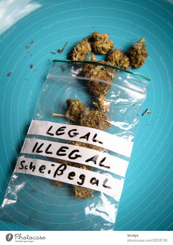 legal. illegal. scheißegal Alternativmedizin Rauchen Rauschmittel Erholung Blüte Cannabis Plastiktüte Schriftzeichen Duft authentisch rebellisch grün türkis