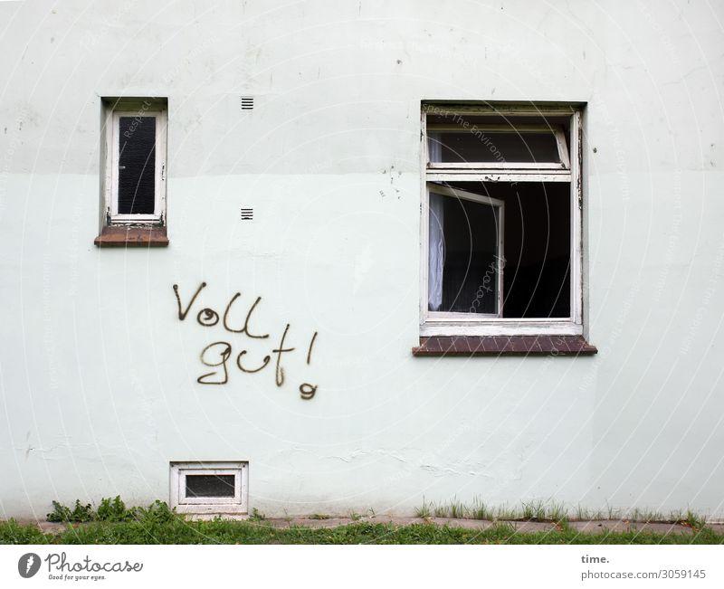 Strategie Stadt Haus Fenster Leben Graffiti Wand Gras Zeit Mauer Design Schriftzeichen offen Vergänglichkeit kaputt Wandel & Veränderung Neugier