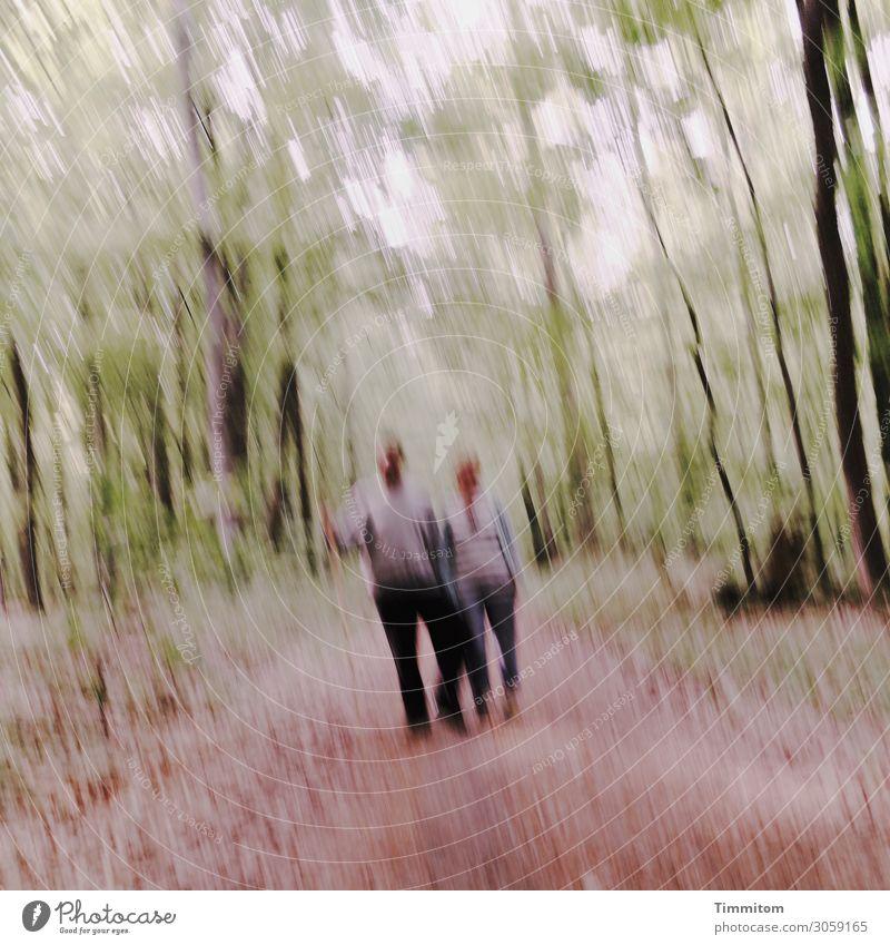 nebulös   ist dieses Paar Frau Mensch Ferien & Urlaub & Reisen Natur Mann Pflanze grün Baum Freude Wald Gesundheit Erwachsene Umwelt lustig Wege & Pfade Gefühle