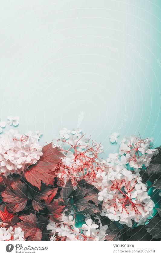 Herbstliche Blätter und Blüten auf hellblauem Hintergrund, Draufsicht. Rand. Raum kopieren Licht Borte Textfreiraum Blumenstrauß Ast Overhead Schreibtisch