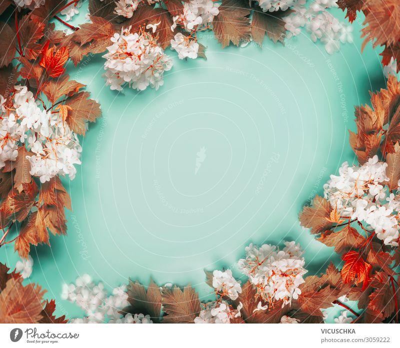 Wunderschöner Rahmen aus Herbstblättern und Blumen auf türkisblauem Hintergrund, Draufsicht Blätter Textfreiraum Blumenstrauß Ast Overhead Schreibtisch