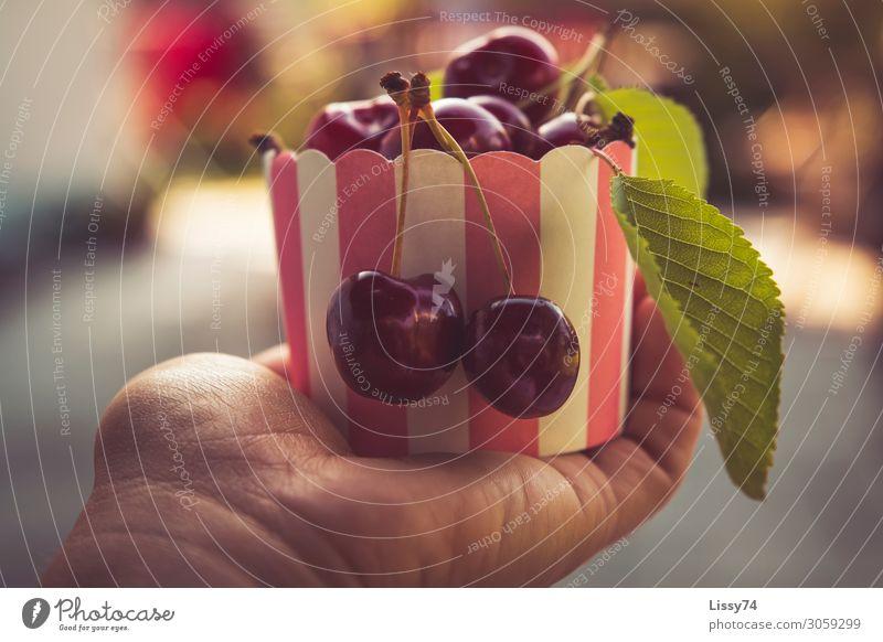 Cherries Lebensmittel Frucht Kirsche Ernährung Schalen & Schüsseln Gesunde Ernährung Kindererziehung Hand Schönes Wetter Diät Essen Gesundheit süß rot Freude
