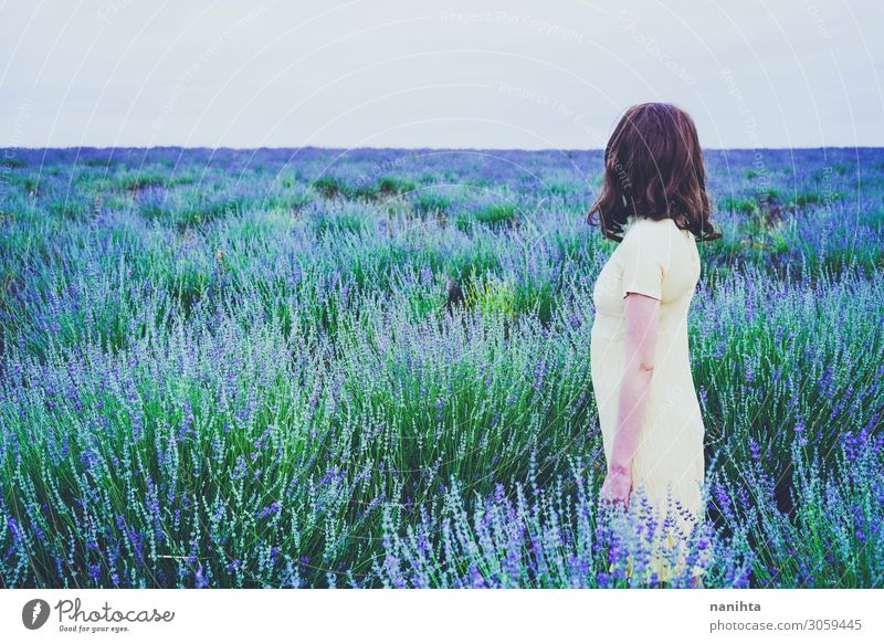 Rückansicht einer jungen Frau in einem Lavendelfeld Lifestyle Erholung Duft Abenteuer Sommer Mensch feminin Erwachsene Jugendliche 1 30-45 Jahre Natur