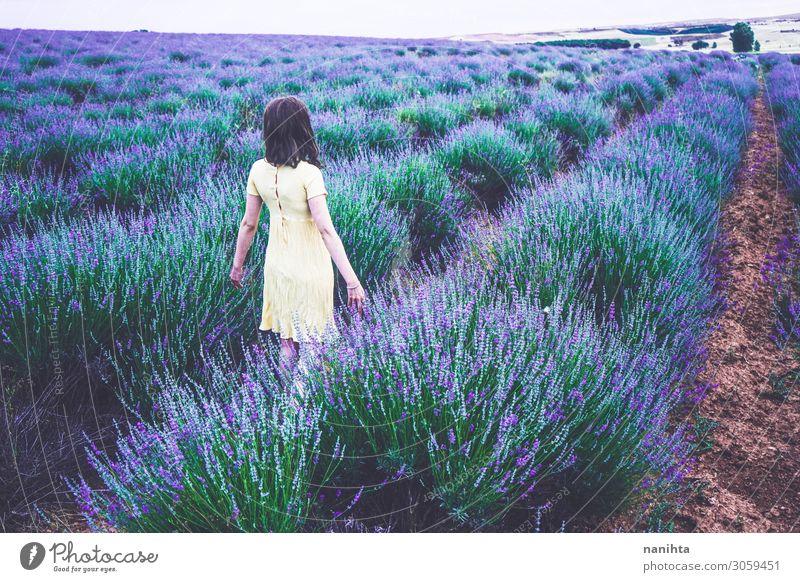Rückansicht einer jungen Frau in einem Lavendelfeld Lifestyle Erholung Duft Abenteuer Sommer Landwirtschaft Forstwirtschaft Mensch feminin Erwachsene