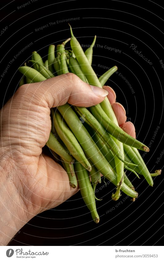 Eine Hand voll Stangenbohnen Lebensmittel Gemüse Ernährung Bioprodukte Vegetarische Ernährung Gesunde Ernährung Mann Erwachsene Finger Arbeit & Erwerbstätigkeit