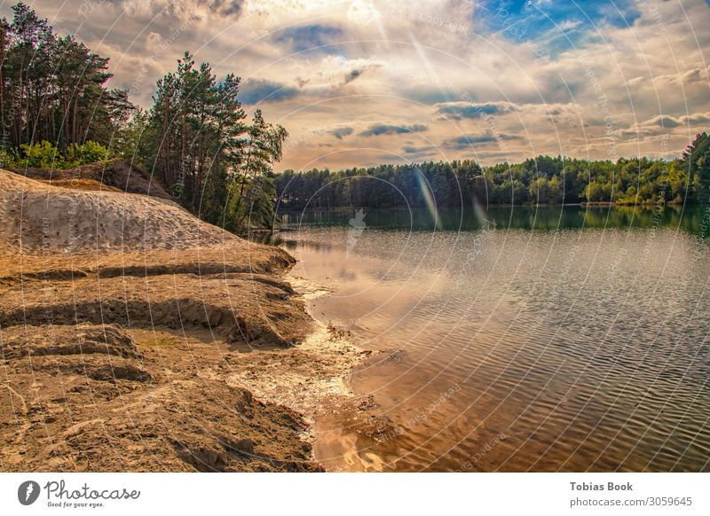 Urlaubsfeeling am Sonntag Landschaft Himmel Wolken Sonne Sonnenlicht Sommer Schönes Wetter Baum Gras Wald Hügel Wellen Küste Strand See Erholung