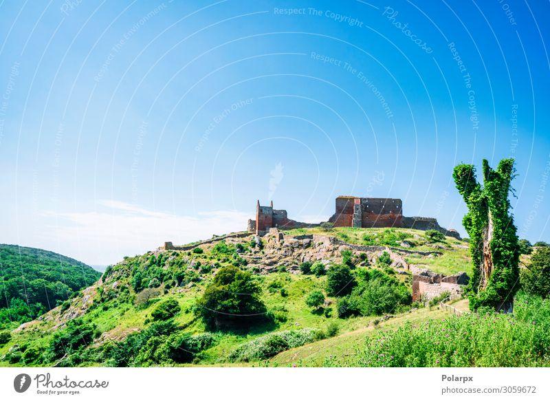 Altes Schloss auf einem grünen Hügel mit Bäumen Ferien & Urlaub & Reisen Tourismus Sommer Insel Berge u. Gebirge Natur Landschaft Himmel Gras Wald
