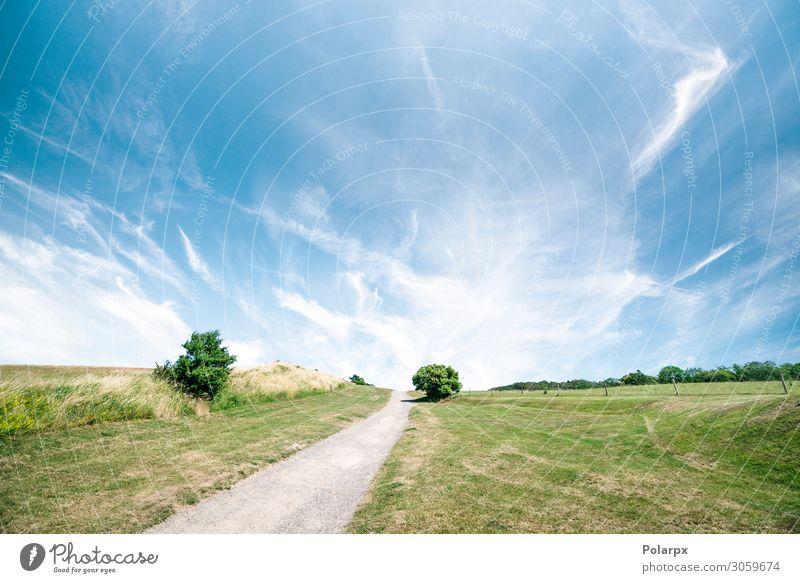 Wanderung in einer wunderschönen Landschaft Ferien & Urlaub & Reisen Ausflug Abenteuer Freiheit Sommer Berge u. Gebirge wandern Natur Baum Gras Park Wiese