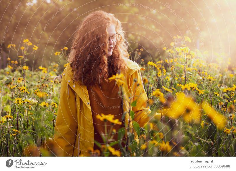 Sonnenmorgen Mensch Natur Jugendliche Junge Frau Sommer Pflanze schön ruhig 18-30 Jahre Erwachsene Wärme gelb feminin Glück Zufriedenheit Park