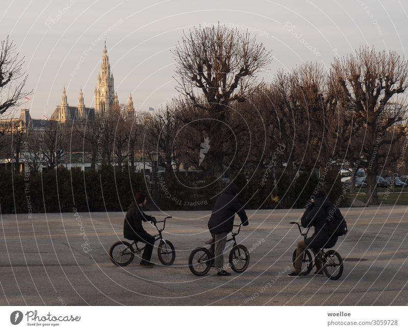 BMX in Vienna Freude Freizeit & Hobby Fahrradfahren Mensch maskulin Junger Mann Jugendliche Freundschaft 3 18-30 Jahre Erwachsene Winter Baum Wien Österreich