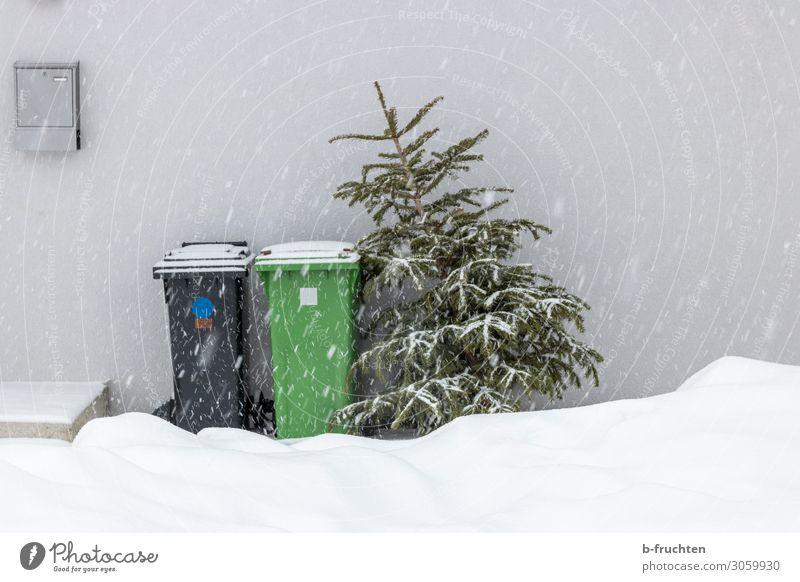Weihnachtsbaum zum abholen. Winter Schnee Feste & Feiern Weihnachten & Advent Baum Haus Mauer Wand Container gebrauchen stehen alt Religion & Glaube
