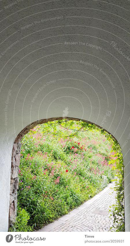 Rundbogendurchgang ins Grüne Frühling blick ins grüne begrünt Wege & Pfade Mauerdurchgang Durchgang Tag Außenaufnahme Tunnel Gang Menschenleer Unterführung