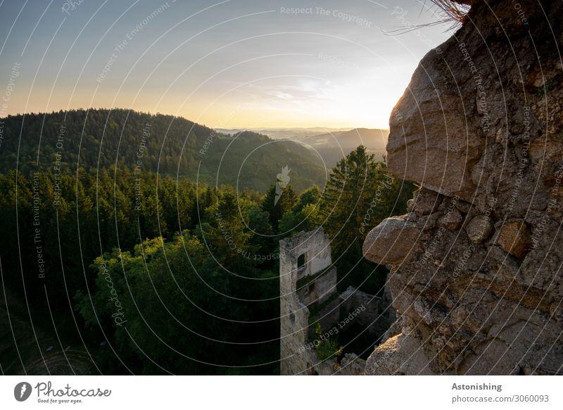 alte Mauern Umwelt Natur Landschaft Pflanze Horizont Sonne Sonnenaufgang Sonnenuntergang Sonnenlicht Sommer Wetter Schönes Wetter Baum Wald Hügel Felsen