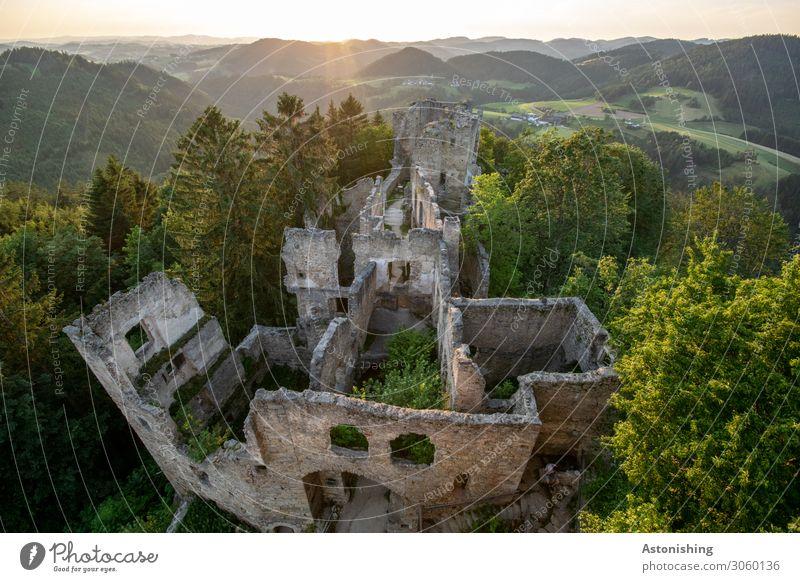 Burgruine Umwelt Natur Landschaft Pflanze Luft Himmel Sonne Sonnenaufgang Sonnenuntergang Sonnenlicht Sommer Wetter Schönes Wetter Baum Hügel Berge u. Gebirge