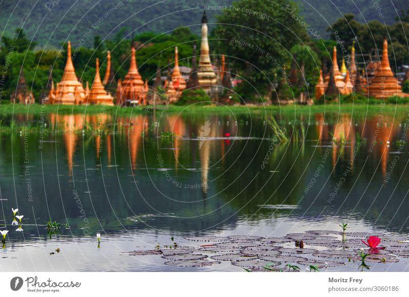 Lotus flower and Pagodas on a Lake. Ferien & Urlaub & Reisen Mensch Natur Pflanze Schönes Wetter Garten rosa Kraft Religion & Glaube pagoda Asien lotus