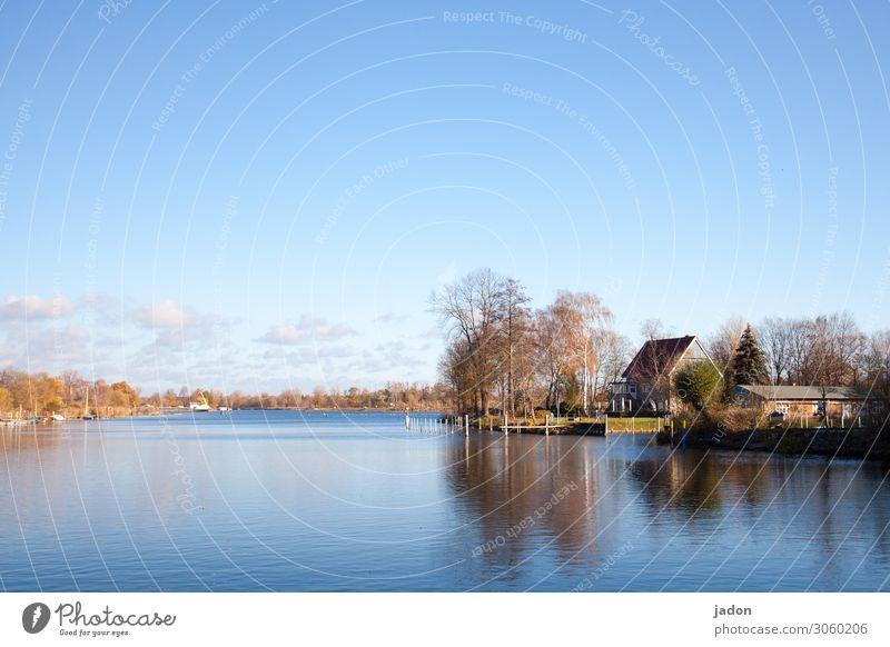 idylle am see. ruhig Natur Landschaft Wasser Himmel Horizont Herbst Schönes Wetter Baum Seeufer Flussufer Stadtrand Haus Traumhaus Häusliches Leben blau