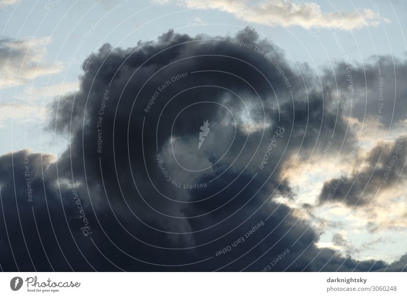 Regen Wolke vor abendlichem Himmel Umwelt Wasser nur Himmel Wolken Gewitterwolken Sonnenaufgang Sonnenuntergang Sommer Klima Wetter schlechtes Wetter Unwetter