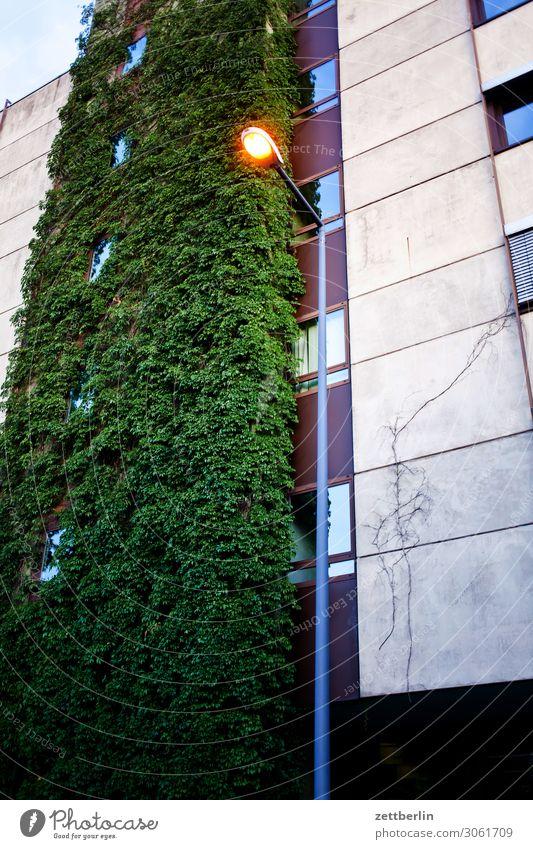 Laterne am Abend Haus dunkel Beleuchtung Textfreiraum Lampe Häusliches Leben Hochhaus Wohnhaus Straßenbeleuchtung Wohnhochhaus Etage Plattenbau Feierabend
