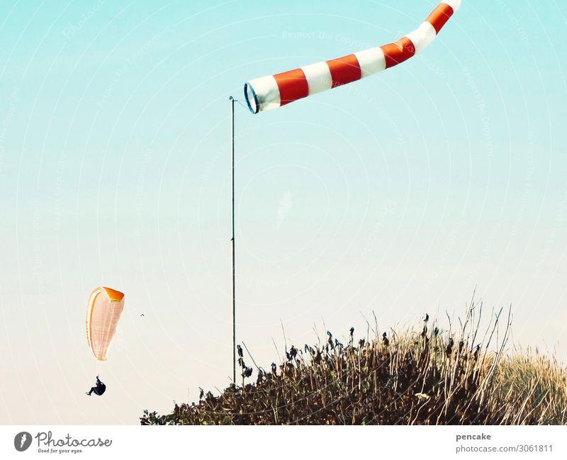 hui! Lifestyle Freude Freizeit & Hobby Natur Landschaft Wolkenloser Himmel Sommer Schönes Wetter Wind Sturm Wärme Nordsee Bewegung fliegen Gleitschirmfliegen