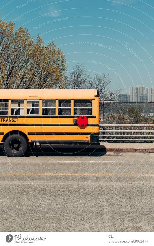 bus Wolkenloser Himmel Frühling Schönes Wetter Baum New York City USA Menschenleer Hochhaus Verkehr Verkehrsmittel Verkehrswege Öffentlicher Personennahverkehr