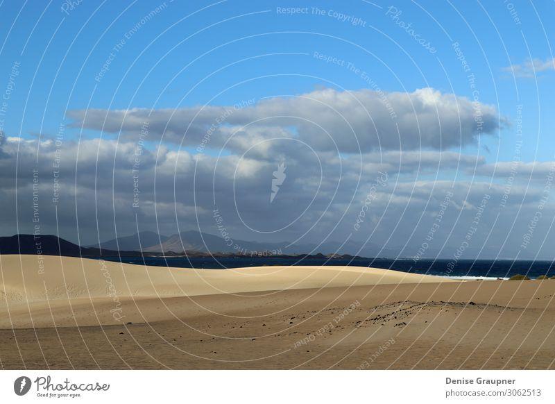 Sand dunes on Fuerteventura Spain Ferien & Urlaub & Reisen Natur Sommer Landschaft Meer Tier Strand Lifestyle Umwelt Park Insel Wind Schönes Wetter Klima Island