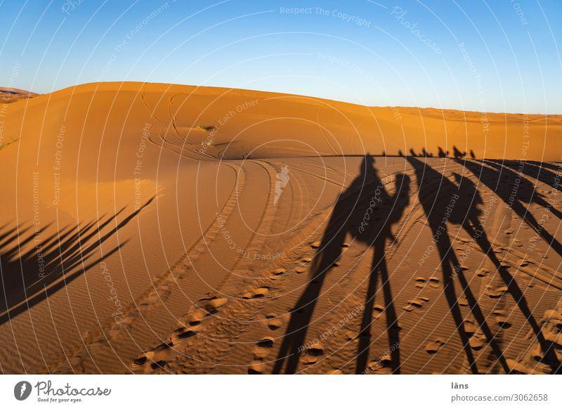 Karawane X Ferien & Urlaub & Reisen Tourismus Ausflug Abenteuer Ferne Mensch Menschengruppe Sand Himmel Wolkenloser Himmel Schönes Wetter Wüste Sahara