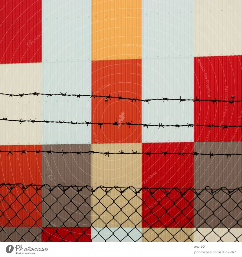 Freiheit für die Kunst! Stacheldraht Stacheldrahtzaun Maschendraht Maschendrahtzaun Barriere Begrenzung gefangen Blech Blechwand Spitze stachelig braun orange