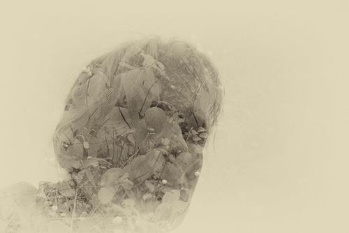wertvoll | Mensch und Natur Frau Erwachsene Sträucher Halm Blatt Haare & Frisuren Gefühle Zufriedenheit ruhig Doppelbelichtung Filter Symbiose Kostbarkeit
