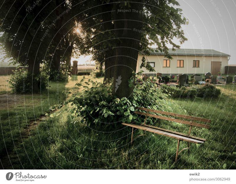 Das große Schweigen Natur Pflanze Sonne Baum Fenster Umwelt Traurigkeit Wege & Pfade Gras Gebäude leuchten Luft Sträucher Schönes Wetter Ewigkeit Hoffnung